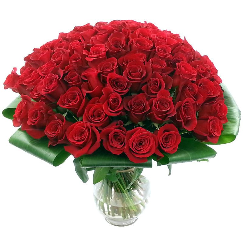 100 red roses - Flower bouquet