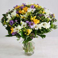 12991-freesias-bouquet-ff701cde68cc99d2f57908ea52352d5c