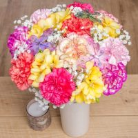 Carnations in mixed colours