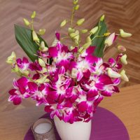 PRODUCT_FLOWERS_Oriental_Orchids_Large_image1_460x460