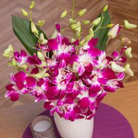 PRODUCT_FLOWERS_Oriental_Orchids_image1_460x460