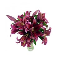 Large Pink Lily Bouquet
