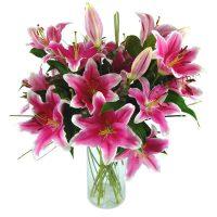 sensation-lilies-2