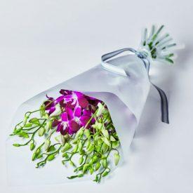 Dendrobium Orchid Flowers - ready to arrange Pinkby Waitrose Florist
